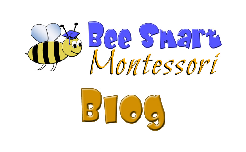 Check Out Our Blog!